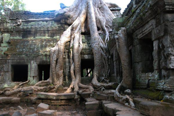 Wieso ist die Tempelanlage von Angkor Wat verlassen worden?