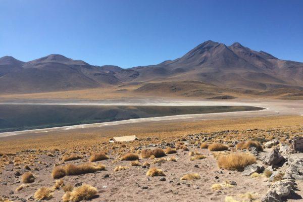 Lagunen und Salzseen der Atacama