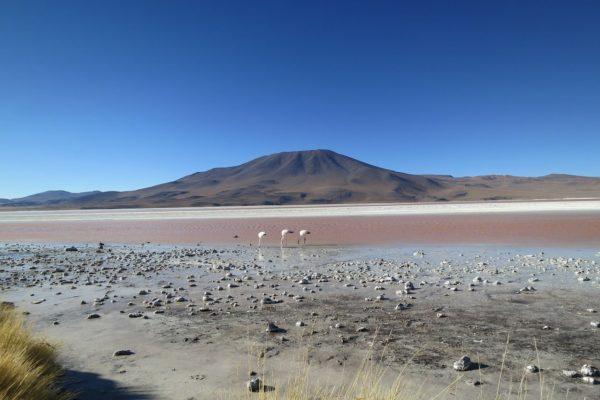 Welche Staaten haben Anteil an der Wüste Atacama?