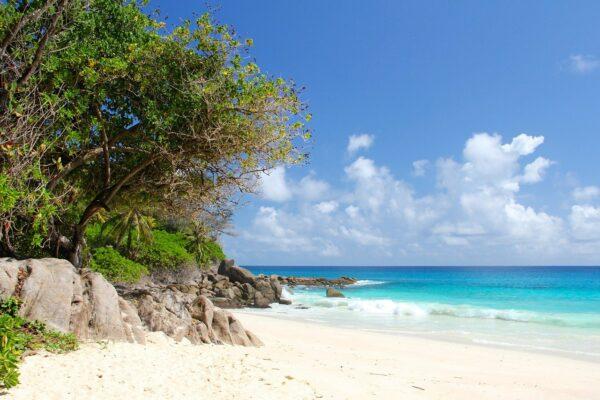 Wie lange fliegt man zu den Seychellen?