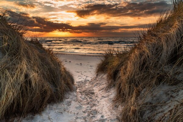 Darß FKK-Strand