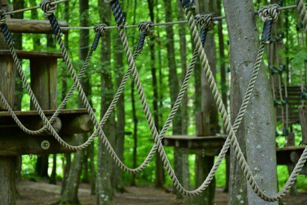 Kletterparks - Nur für die mutigen Familien