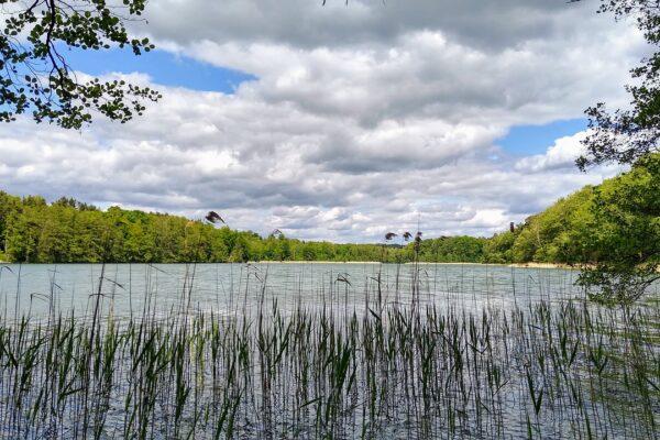 Was ist der beliebteste Badesee in Brandenburg?