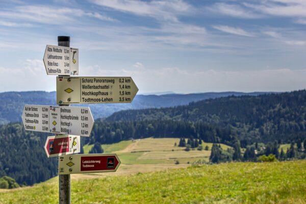 Welche Schwarzwald Ausflugsziele kann man mit dem Hund erleben?